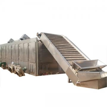 Hot sale factory direct mesh fruit and vegetable dryer DW belt dryer