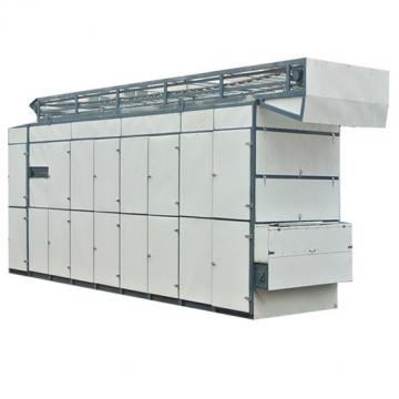 Standard Automatic Hot Air Hemp Mesh Belt Dryer