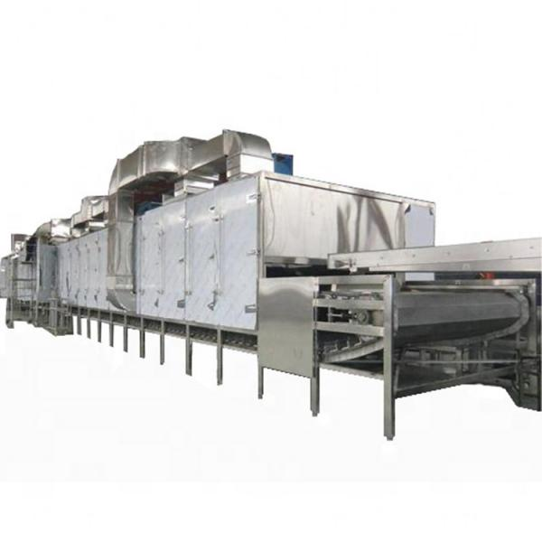 DF/HP-6R industrial food dryer machine for herb drying machine conveyor belt hot air dryer fruit drying production line #1 image